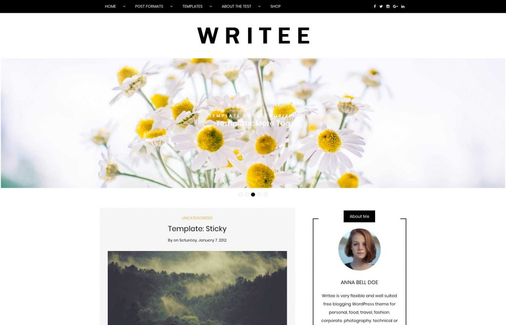 Writee Free Blog Theme on Themesty